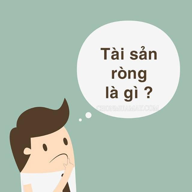 gia-tri-tai-san-rong-la-gi