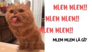 mlem-mlem-nghia-la-gi