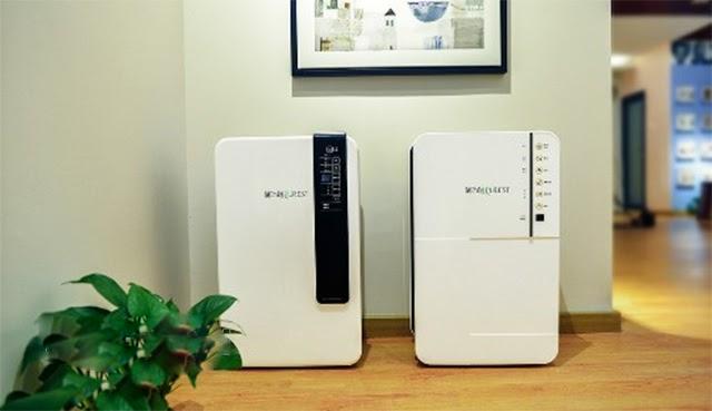 Dùng máy hút ẩm để ngăn ngừa nấm mốc trong gia đình